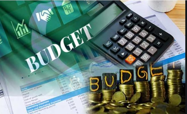 Federal Budget 2020-21 Pakistan pdf